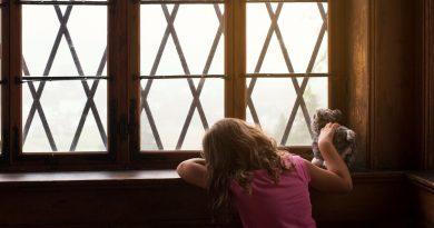 Gyermekjogi visszanézés a 2019-es évre, vekerdy, fót, családi erőszak, hol tartunk?